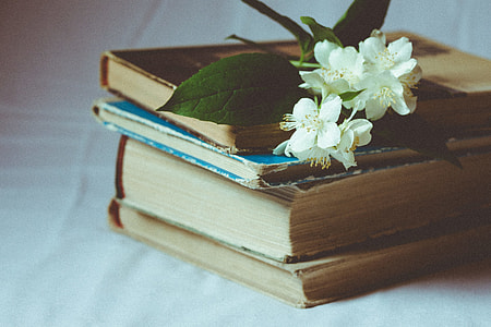 selective focus photography of Stephanotis on brown hardbound book
