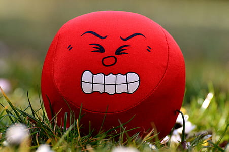 red and white angry printed plush toy on green grass photography