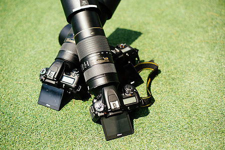 two black DSLR camera leaning on green grass plant