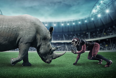 NFL player facing gray rhinoceros in stadium