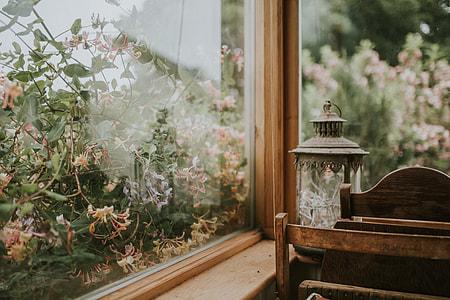 black lantern beside plants