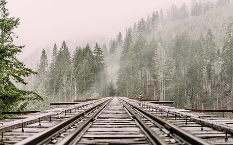 train rail covered with snow