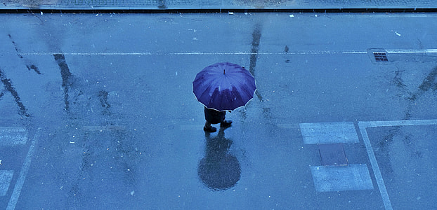 person walking on road with blue umbrella
