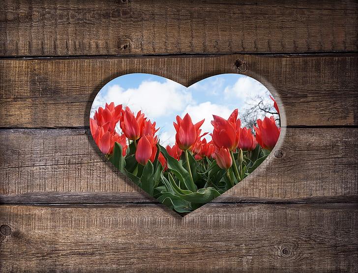 heart, wood, flowers, hole, love, feelings