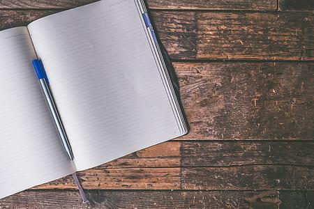 blue ballpoint pen on white ruled notebook