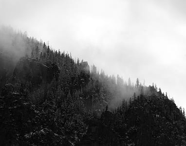 Aerial Photo of Foggy Black and White  Mountain