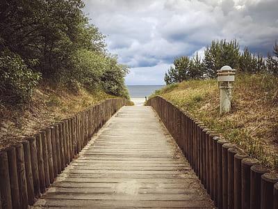 brown wooden pathway under white clouds during daytime