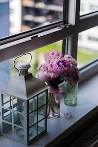 Candle Lantern Near Purple Petaled Flower on Glass Window