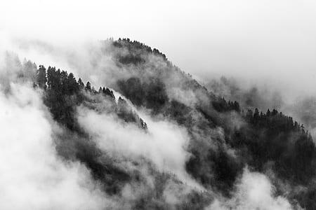 grayscale photo smoky mountain