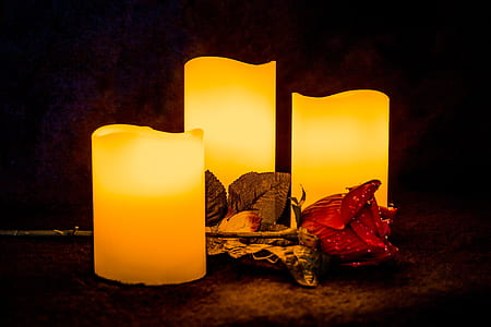 three flameless pillar candles beside flower