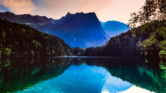 lake surrounded by mountains and forest trees