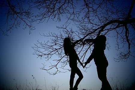 two women silhouette near tree