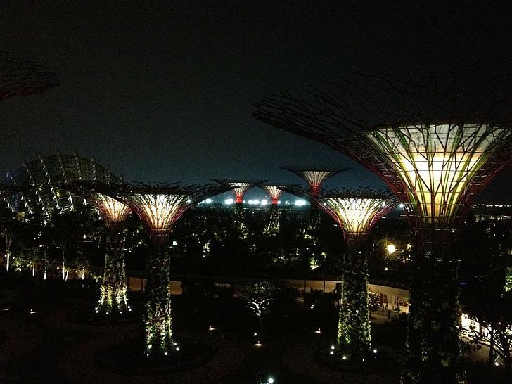 night, illuminated, architecture, urban Scene