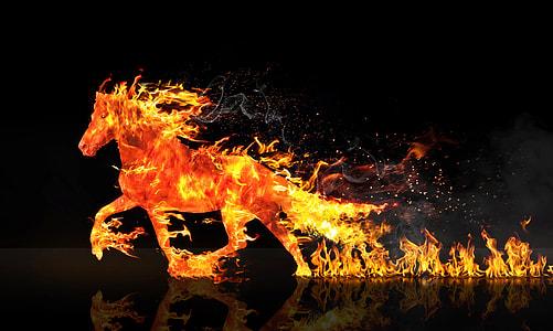horse in flame digital wallpaper