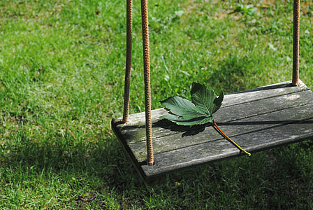 green leaf on swing