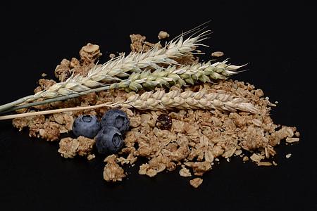 plant grain