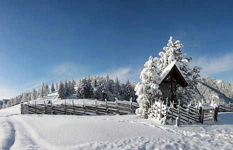 house with fences on snowfield
