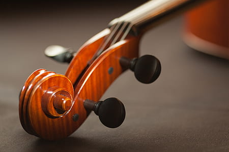 acoustic, art, blur, bowed instrument, bowed stringed instrument, classic