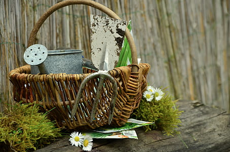 selective focus photograph of wicker basket with watering pot
