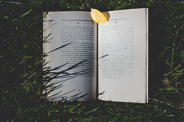 Open book resting in the grass
