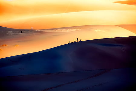 person walking on sand dunes digital wallpaper