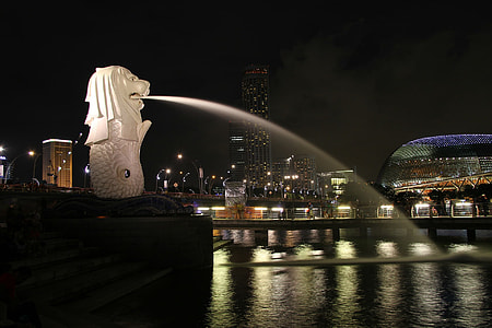white Lion sculpture water fountain in front of body of water photo during night time