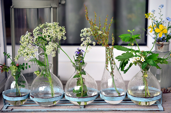 Royalty Free Photo Clear Glass Vases With Flowers Pickpik