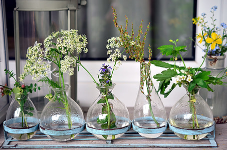 clear glass vases with flowers