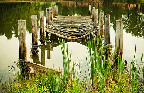 broken brown wooden dock near body of water