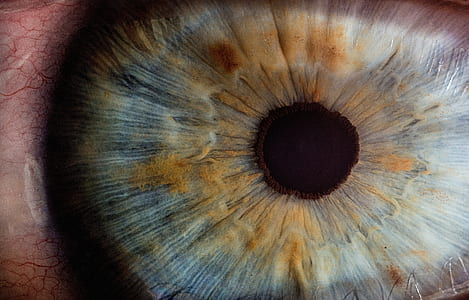 human eye in-close up photography