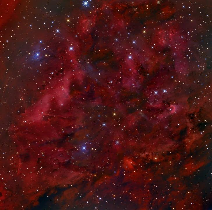 Red Galaxy Digital Wallpaper