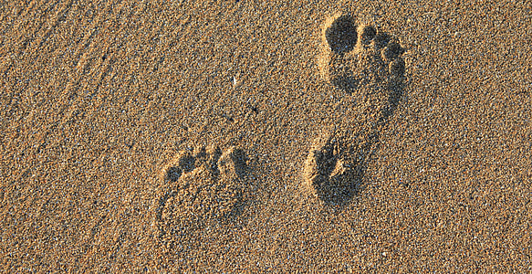 brown sand with human foot print