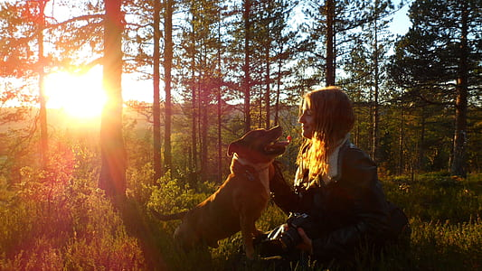 blonde woman with brown dog sitting on green grass during sunset