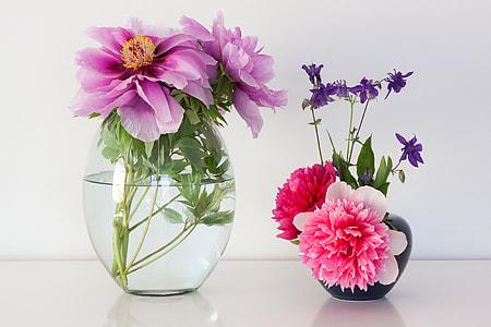 pink and purple petal flowers in vases