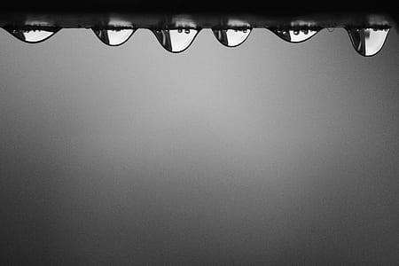 Tear Drops Macro Photography
