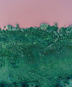Pink river with green grass bank