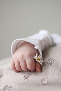 baby holding chamomile flower