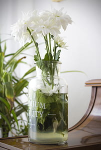 white flowers on clear glass vase filled with clear liquid