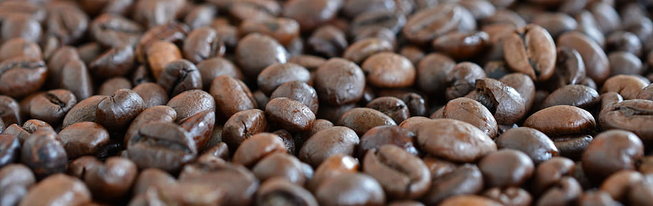 photo of bunch of coffee beans