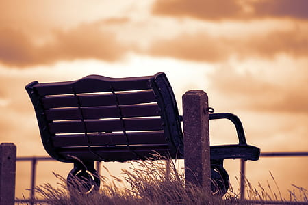 photography of brown metal bench chair