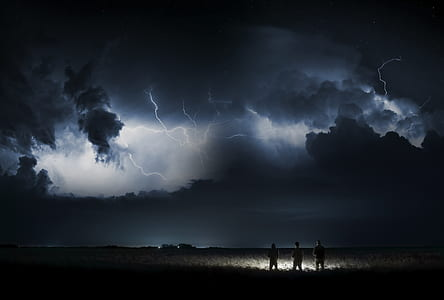 three men near grasses during nighttime