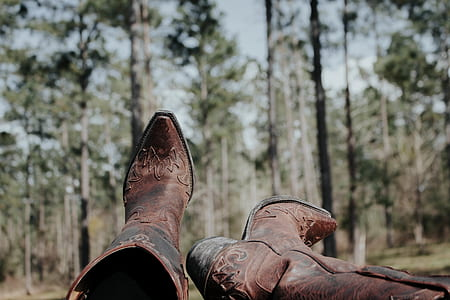 boots, tree, forest, nature, cowboy boots, explore