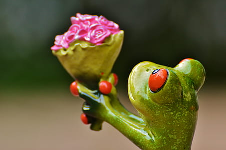 shallow focus photo of green ceramic frog figurine