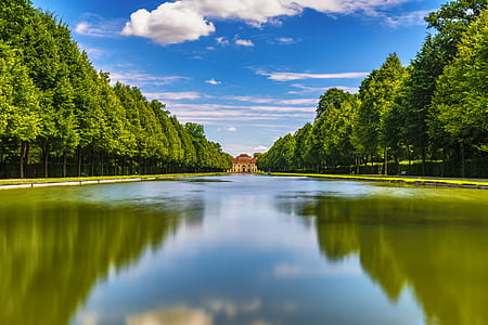 pond between trees