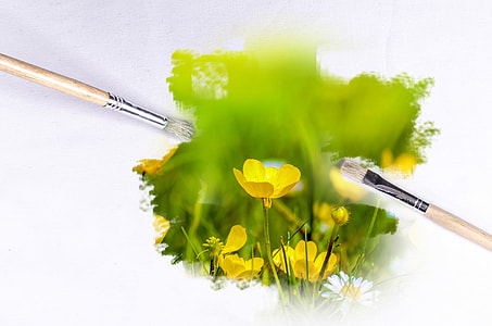 yellow petaled flowers and paint brushes