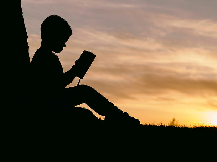 silhouette of boy reading book near tree during sunset