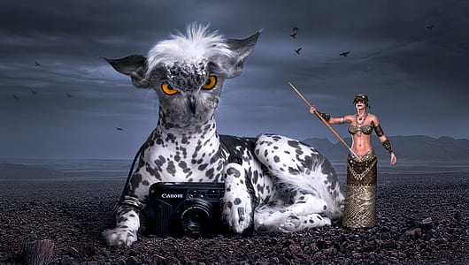 photo of black Camera with white and black animal and woman holding stick 3D illustration