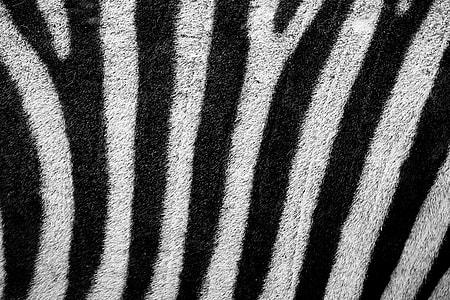 white and black textile