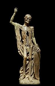 brown skeleton sculpture