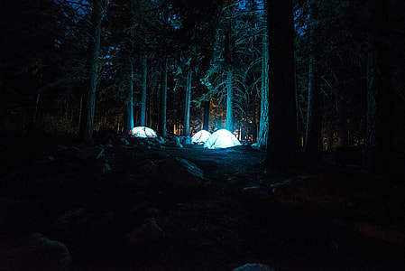 three dome tent in forest